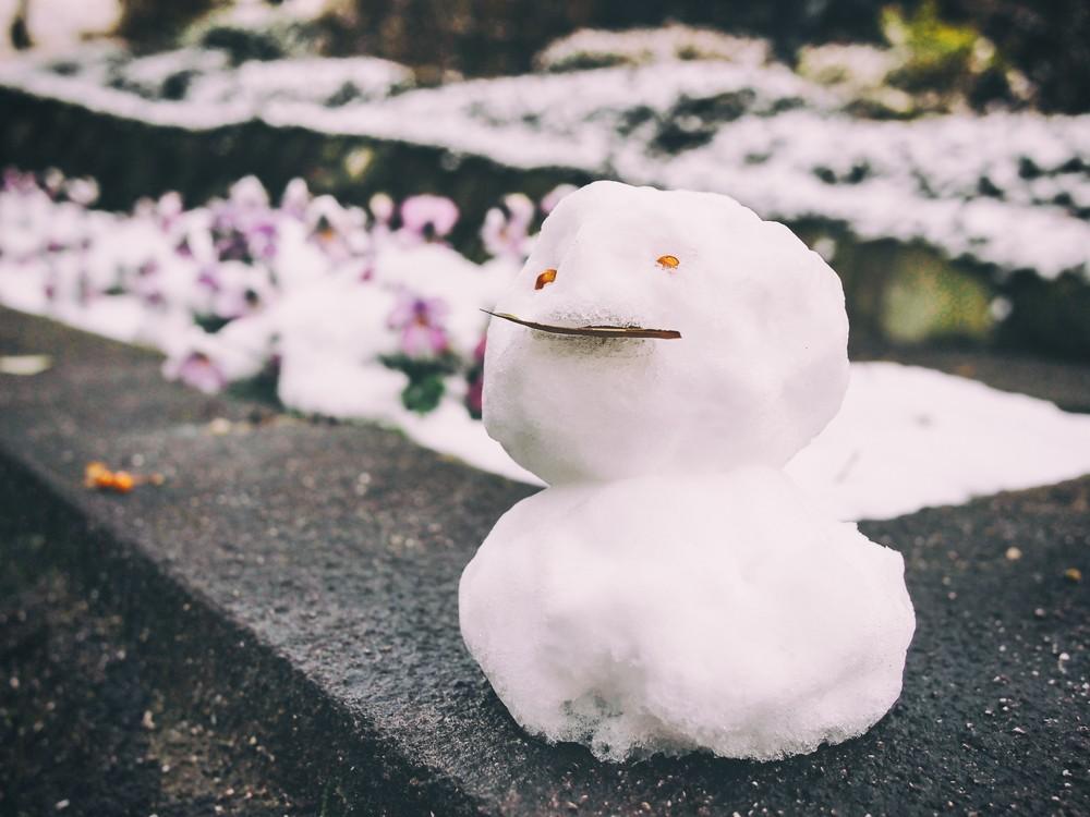 生活保護 冬季加算 区分